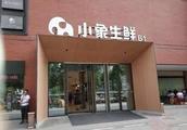 零售周报|美团旗下小象生鲜正式开业;苏宁将落地200个零售业态