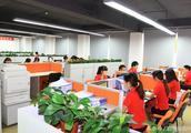 企业辅导期业务报告