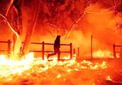 美国加州山火肆虐!实拍500所房屋被烧毁5人死亡 已进入紧急状态