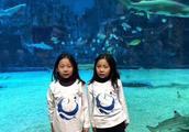 北京双胞胎姐妹青岛海边走失最新进展:海上搜救已经开始