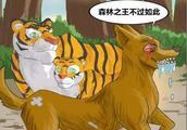 漫画:森林之王不过如此!