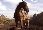 战马被士兵所救,百般照顾,士兵战死后,此马忍辱10日为其报仇