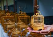 身价不菲的竹鸟笼原来藏着这样的秘密……
