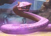「班克」侏罗纪世界进化 10000战斗力世界头目响尾蛇
