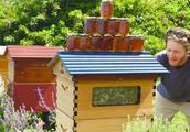 """美国小伙,用""""特殊方法""""养蜜蜂,一个月众筹8千万元,颠覆传统"""