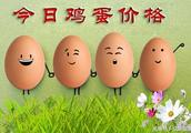鸡蛋:2018.12.16今日全国鸡蛋价格最新行情更新!不是旧闻!