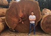中国土豪飞去非洲,400万购百吨垃圾木,黑人乐出声:有钱真好骗