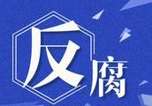 陕西省委原书记赵正永涉嫌严重违纪违法被调查