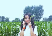 杨钰莹《茶山情歌》现场版,歌声太甜,唱得台下嘉宾都失控了!