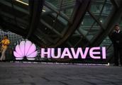 深圳某企业声援华为,却被网友吐槽,就因处罚购买iPhone的员工?
