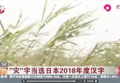 """40多人遇难!台风掠境后又遇地震,""""灾""""当选日本2018年度汉字"""