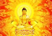 佛教歌曲《步步莲花开》心无杂念,便生莲花心,愿听者心神平静!