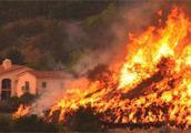 """美国加州山火损失创历史之最 特朗普言论火上""""浇油""""被回怼"""