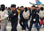 中柬联手摧毁3个电诈窝点,包机载233名嫌疑人抵穗