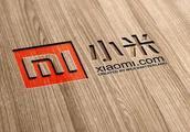 小米基金股东派5.94亿股予投资者 转仓不表示出售