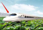 不可思议!中国又一黑科技,竟用竹子造高铁,美日至今想不通!