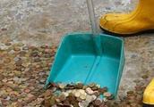 游客往许愿池里投那么多钱币,最后都去哪了?原来都用在这方面了