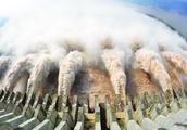 耗资上千亿的三峡水电站,一年赚多少钱?看到数字后不知该说什么