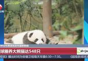 国家林业和草原局发布最新数据:全球圈养大熊猫达548只