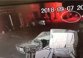 Qnews|警方通报男子自称捡狗被拘:明知狗有主人并带走,其与狗主已和解