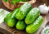 顶上带花的黄瓜都打激素,是真相还是谣言?营养师教你如何挑选