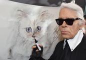 """香奈儿创意总监""""老佛爷""""拉格斐辞世,巨额财产由""""爱猫""""继承?"""