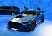 又是一款狠角色!最强版本的Mustang来了!