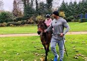 巨石强森带着女儿骑马,网友感叹:他看起来比马壮!