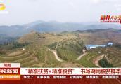 非凡40年:茶叶芋头是个宝,新宁县紧跟市场形式抓住脱贫机遇!