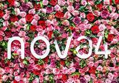 实物与期待不符?华为nova4发布会你看到了什么?