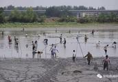 美炸!颍州西湖,马上开始挖湖!9900亩水面!将超杭州西湖!