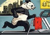 外媒:所有迹象都表明有更多资金正涌入中国市场,巴菲特:请做多