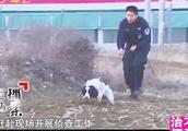 母女惨死家中脖子几乎被砍断内衣被解开,警方派警犬追踪凶手痕迹