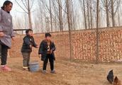 农村小院喂养老母鸡,冬天保暖也是大问题,方法简单你想不到
