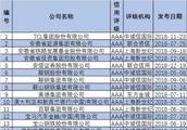 国内知名企业信用评级名单