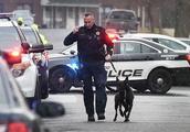 """美国和加拿大多地收到炸弹威胁,警方:很有可能是""""诈弹""""!"""
