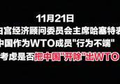 """美国叫嚣要把中国开除""""wto""""外交部回应:中国都敢开痴人说梦"""
