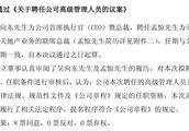 马明哲亲信入主华夏幸福,原总裁孟惊被分权沦为联席总裁