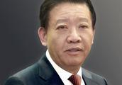 葵花药业前董事长涉嫌故意杀人被捕