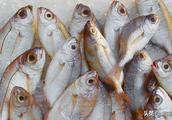 上海今起开始3个月禁渔期 非法捕捞或将追究刑事责任