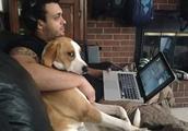 我的男朋友被一只狗抢了!这个世界太疯狂了!狗:这是我的男人!