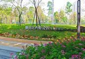 约吗?深圳首开宠物主题公园,这里的社区公园凑成九宫格了