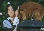 《狗十三》:李玩式的成长,是人类大规模的屠杀