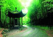俗语:门前种竹,子孙享福,有何含义?蕴含古人对生活美好的期望
