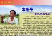 袁隆平被羞辱,是这个时代最大的悲哀!愿我们都能支持守护袁隆平