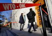 """美在WTO遭""""围攻"""" 欧盟官员:你就是WTO危机震源"""