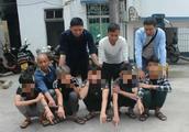 东方警方19小时侦破一起寻衅滋事案 10嫌犯街头持刀追人砸物落网