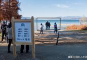 洱海边赚钱也太容易了,搭个木架子供人拍照,十块一位不少人排队