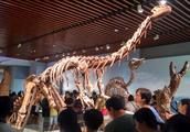 南京博物馆古生物模型