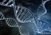 美国宇航员在空间站待了一年,DNA竟发生突变?